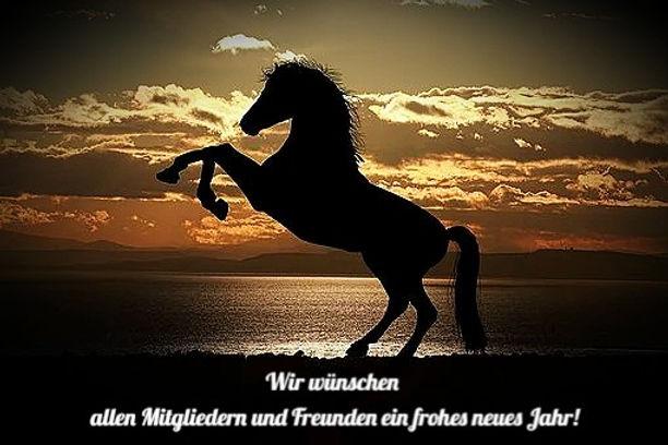 horse-1804425__340_edited.jpg