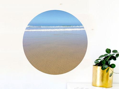 Dunedin Dot - Campbells Bay [R]