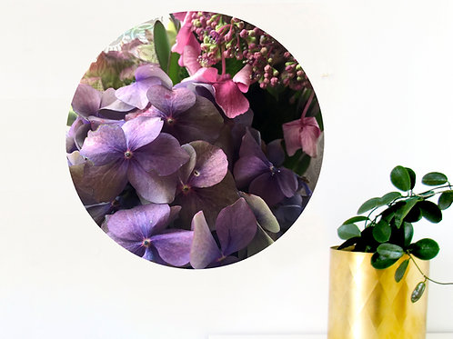 Botanical art dot - hydrangea 1 [R]