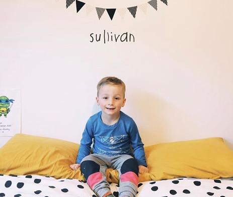 Sullivan's Room