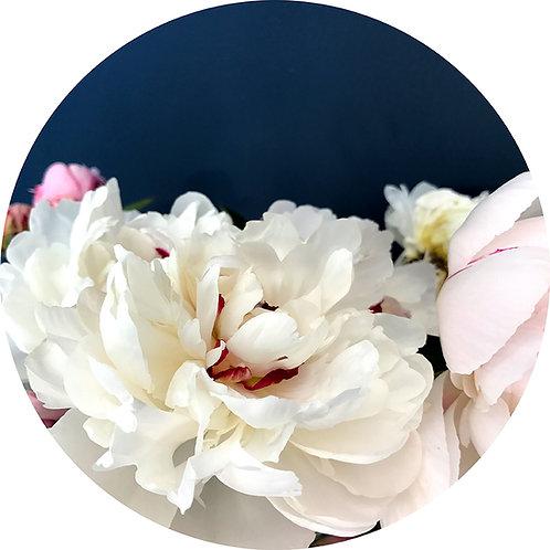 Peony love - botanical art dot [R]
