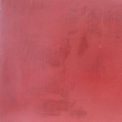 D-041-Rojo_Coral.jpg