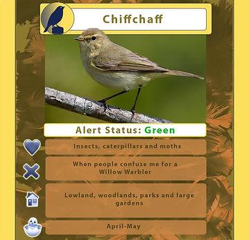 chiff chaff treetop trump.jpg
