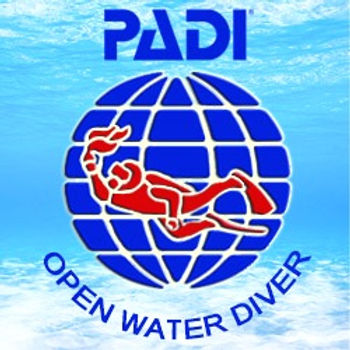 padi-open-water-diver-course_edited.jpg