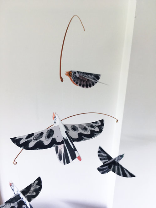 Colour belly birds mobile