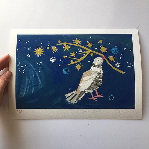 Bird of Peace print