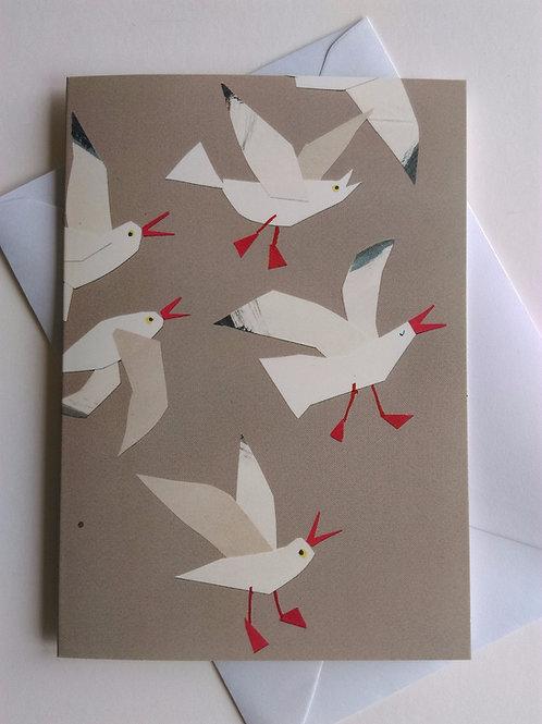 Seagull Walk card