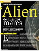 Poliquetos: Aliens de nuestros mares