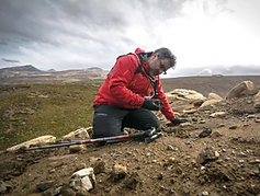 """Chilean and Antarctic Fossils Reveal the Last """"Geologic Minutes"""" of the Age of Dinosaurs"""