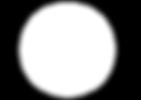 logo transp white.png