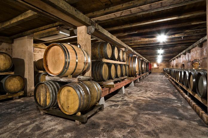 Čotar wine cellar