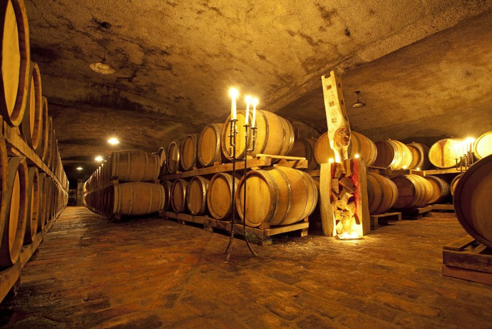 Movia wine cellar