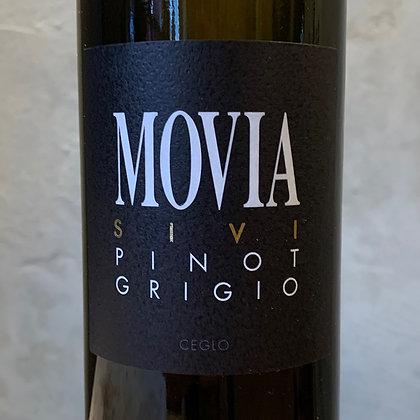 Movia Sivi Pinot