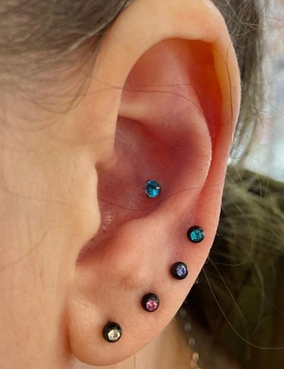 Conch by Sophie