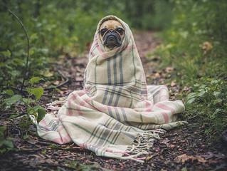 """מי שנושכו כלב, בעתיד שישמע נביחות, יחרד""""."""