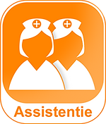 Assistentie_1024x600.png