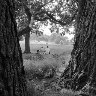 Resting at Trelissick-102-Penryn CC.jpg