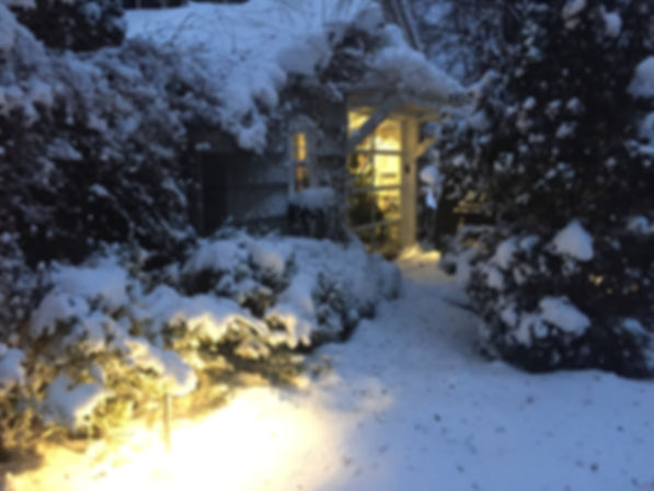 Beautiful Winter Home