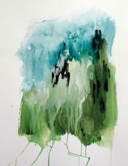 Sammal // Moss