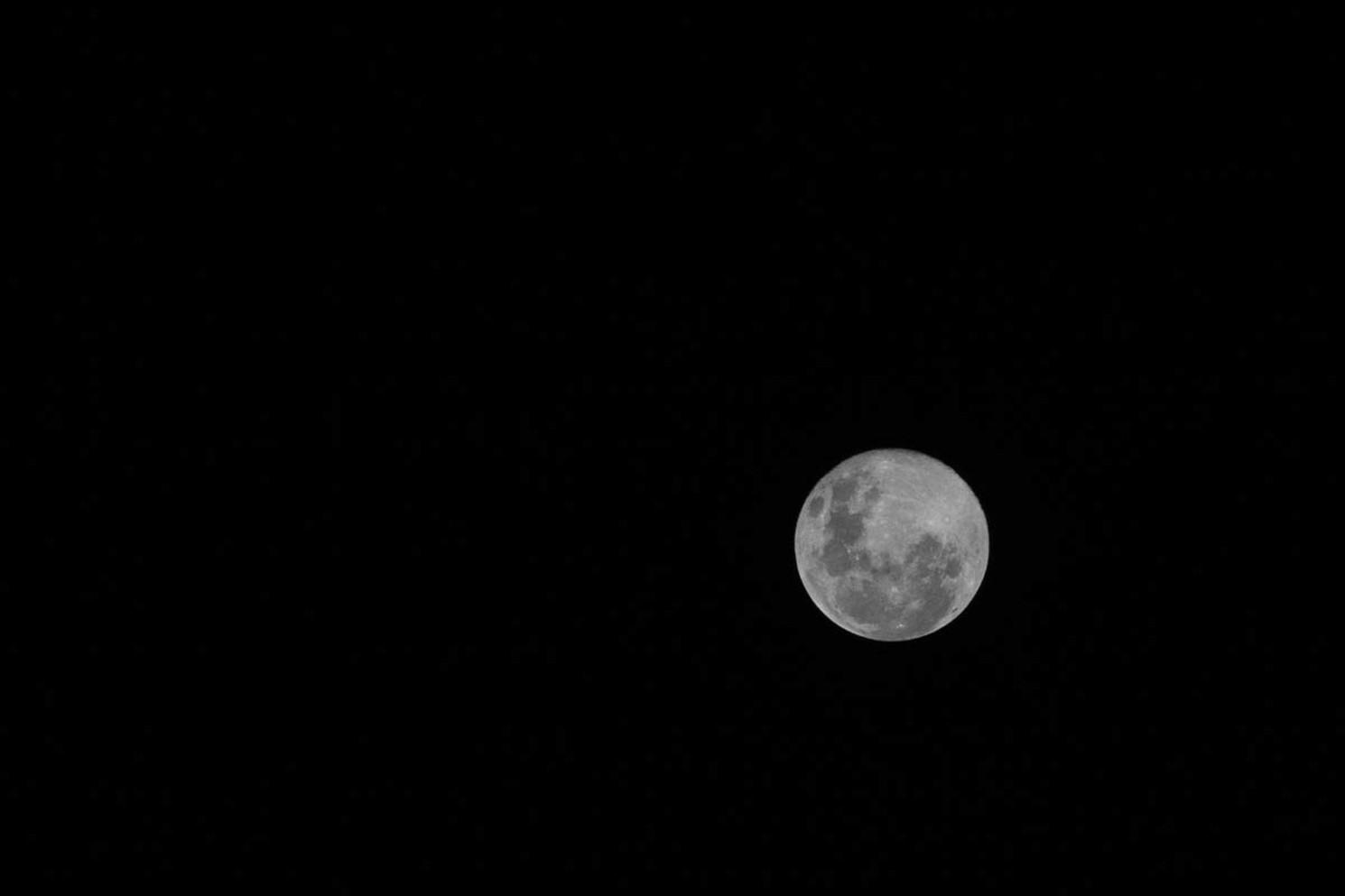 Silvery Moon
