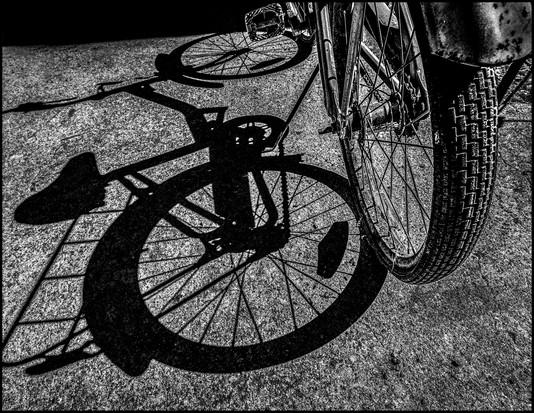 Bike in the Path