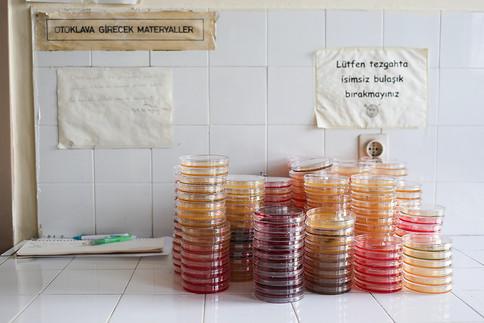 Kübra Özdemir, 'Gıda Araştırma Laboratuvarı-6'