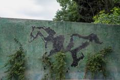 Ekin Çekiç, Hasan Deniz & Okan Özdemir, 'At Yarışları', Madde: At Yarışları