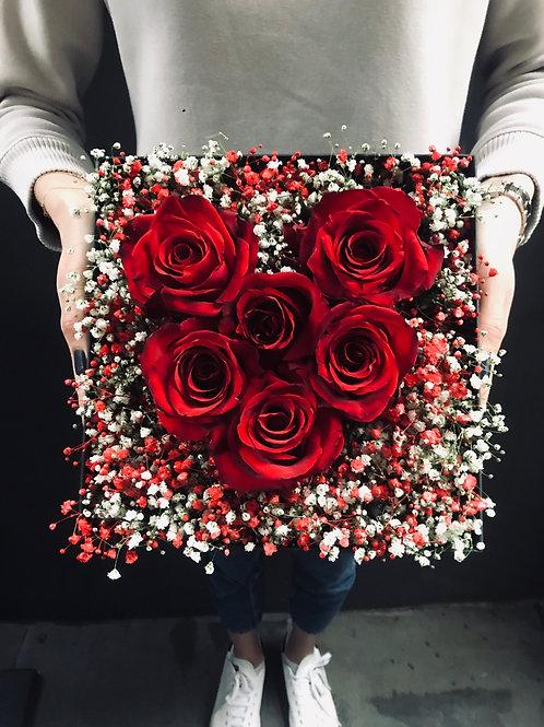 Siyah Kutuda Kırmızı Degrade Cipsofilyalı Seni Seviyorum Kalp