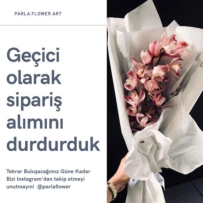 PARLA FLOWER ART