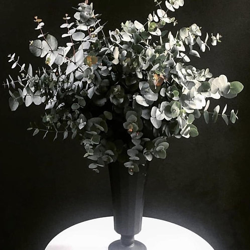 Siyah Mat Şık Vazosunda Mis Kokulu Okaliptus