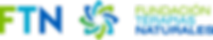Logo FTN.png