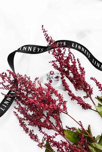 Linneys_41.jpg