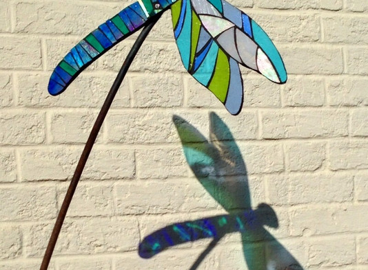 Dragonfly Delights