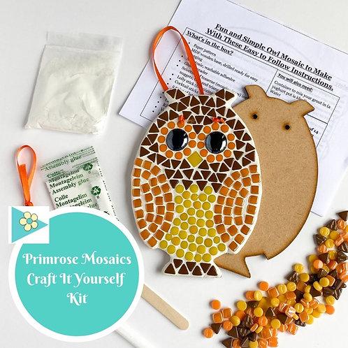 OWL- Indoor Mosaic Craft Kit