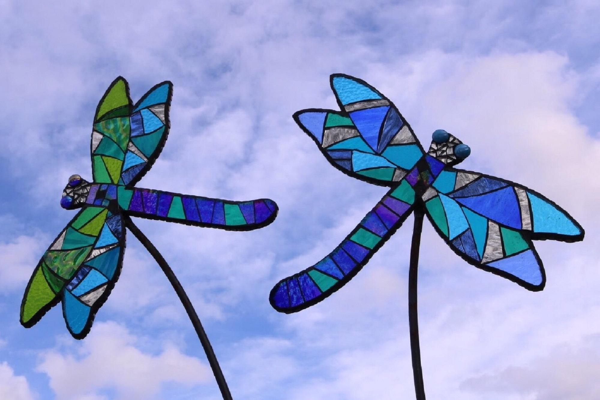 Wildlife Meadow - Dragonflies