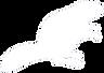 castore_consulting_logo_white_transparent.png
