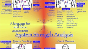 What is Kinesiology?