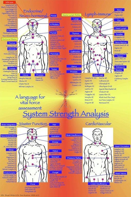 Follow up Muscle Testing/Recheck