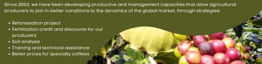 Desde el 2003, venimos desarrollando capacidades productivas y de gestión que permitan a l