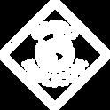 footer-logo-GRUPOMOLICOM.png