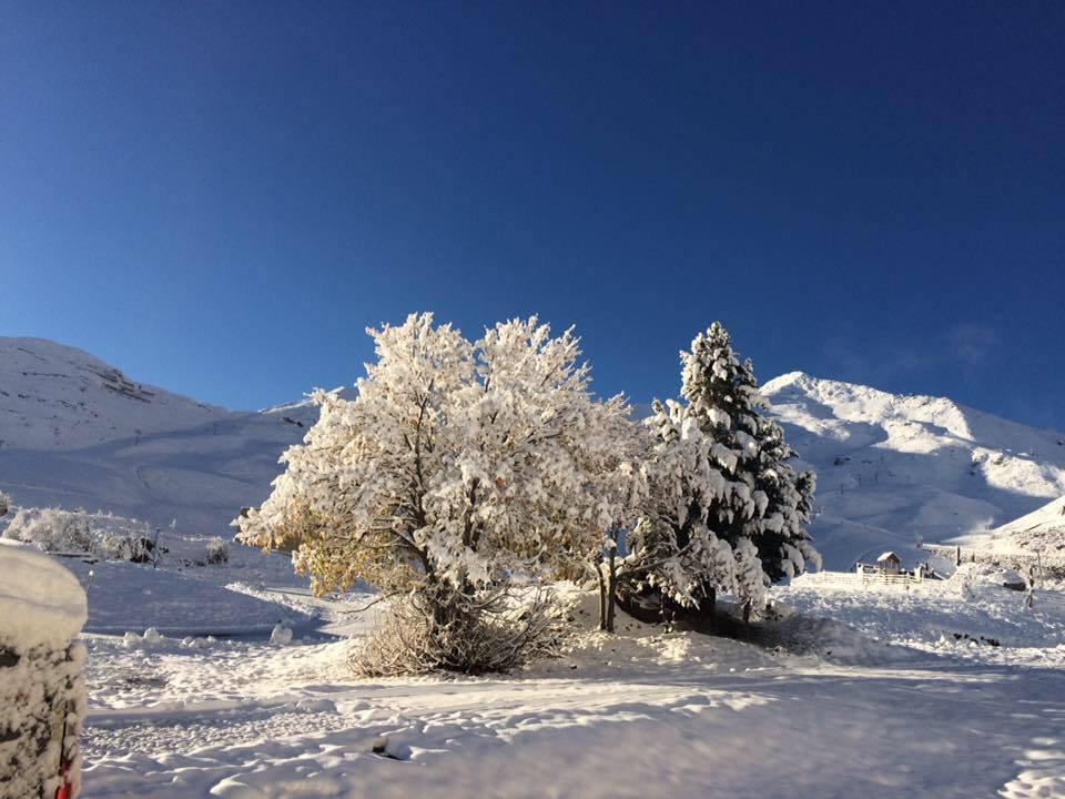 piau hiver.jpg