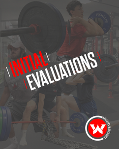 INITIAL EVALUATIONS
