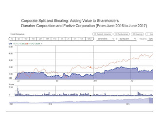 Dis-aggregation and Shoaling: Adding Value to Shareholders Equity