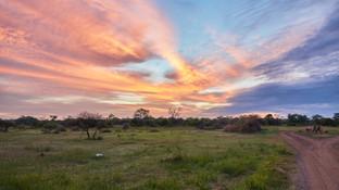 beautiful bushveld sunsets