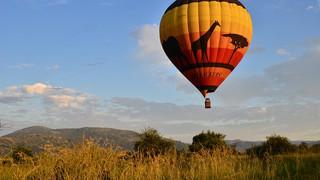 balloon safari big 5