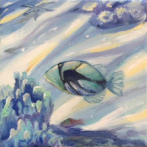 Humuhumu.....Triggerfish