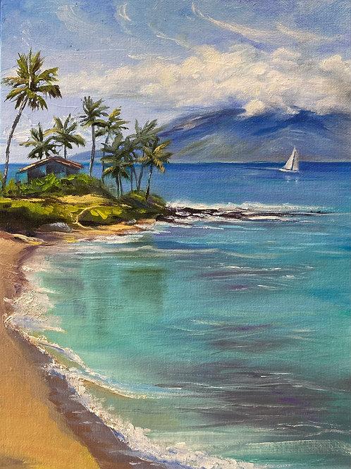 Napili Bay - Maui