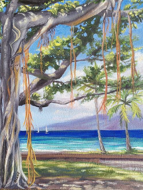 I see A Picasso in the Banyan Tree- Lahaina Town Maui