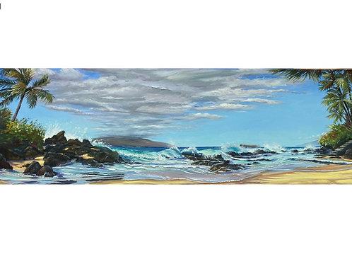 Tide Going Upstairs! Makena Cove aka Secret Beach Maui