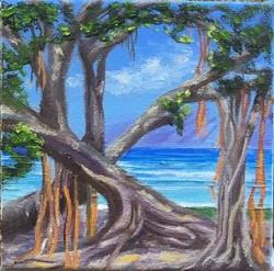 Banyan Tree- Lahaina 5x5
